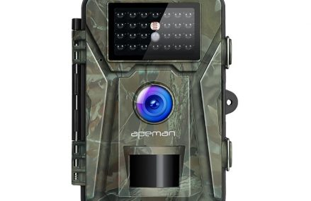 Kamera fotopułapka