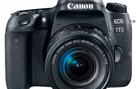 Lustrzanka Canon EOS 77D – opis i charakterystyka