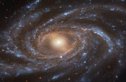 Galaktyka NGC 2336 z ogromną ilością jasnych gwiazd
